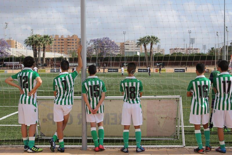 Un groupe de dos de jeunes footballeurs regardent une rencontre image libre de droits