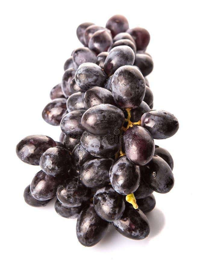 Un groupe de fruit noir II de raisins image libre de droits