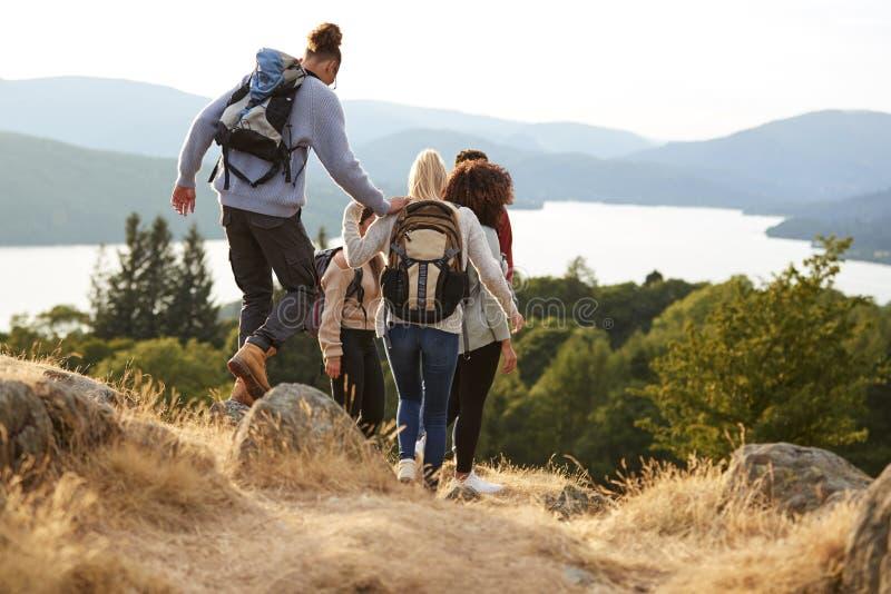 Un groupe de jeunes amis adultes de métis descendant après une hausse de montagne, vue arrière image stock