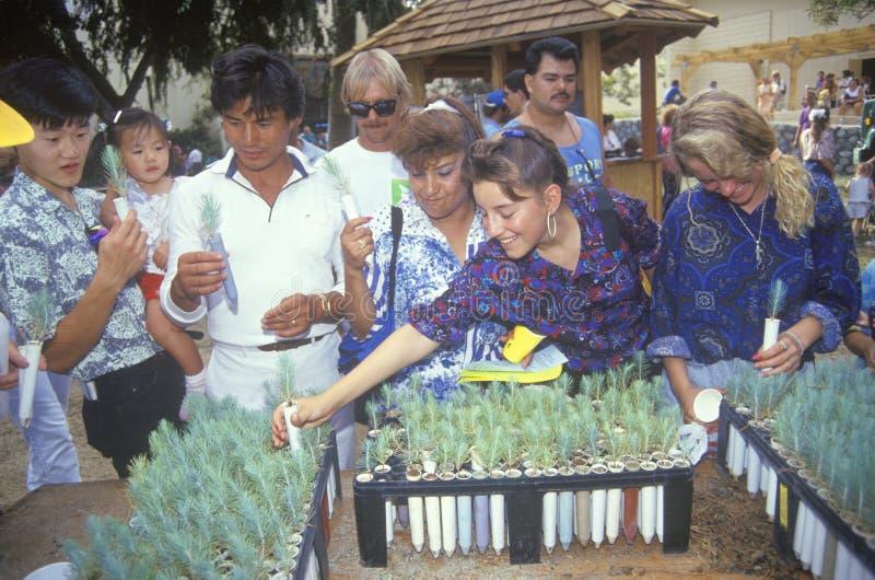 Un groupe de personnes jeunes plantes de examen d'arbre à une cabine à la foire 1991 du comté de Los Angeles photos stock