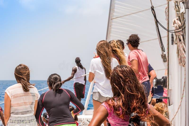 Un groupe de personnes sur un yacht, île de Saona, République Dominicaine  Copiez l'espace pour le texte photographie stock libre de droits