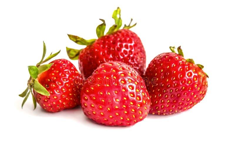 Un groupe de quatre fraises rouges avec les feuilles vertes sur un fond blanc images stock