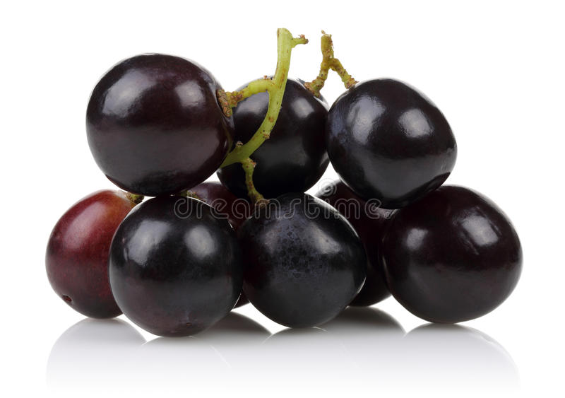 Un groupe de raisins noirs image libre de droits