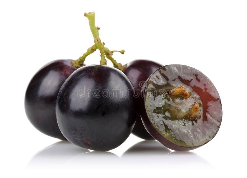 Un groupe de raisins noirs photos stock