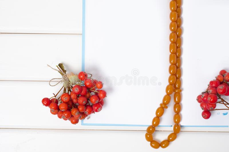 Un groupe de sorbe rouge de baies perle un stylo de bloc-notes image libre de droits