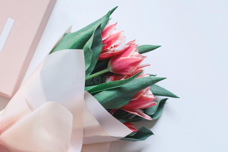 Un groupe de tulipes roses sur le fond blanc avec un boîte-cadeau contre les jeunes jaunes blancs de source de fleur de concept d image stock