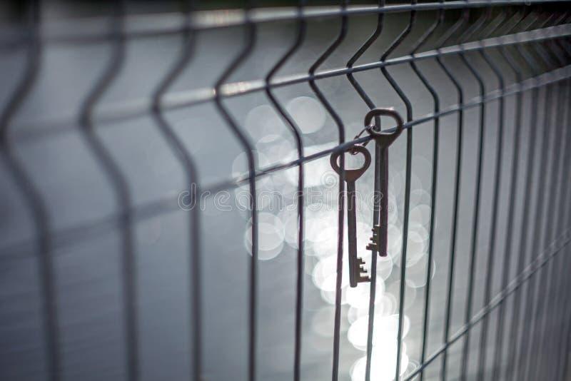 Un groupe de vieilles clés de porte en métal de cru accrochant sur un grillage avec un fond brouillé et des points culminants du  images stock