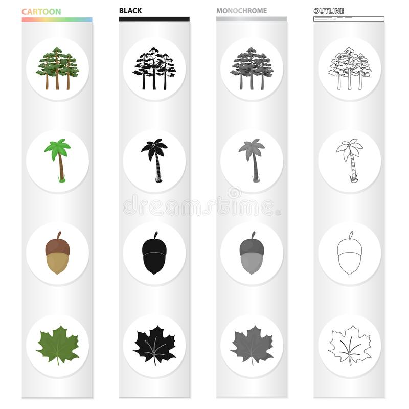 Un grupo de árboles en el bosque, una palmera, una bellota, una hoja de arce Iconos determinados de la colección del bosque en ne ilustración del vector
