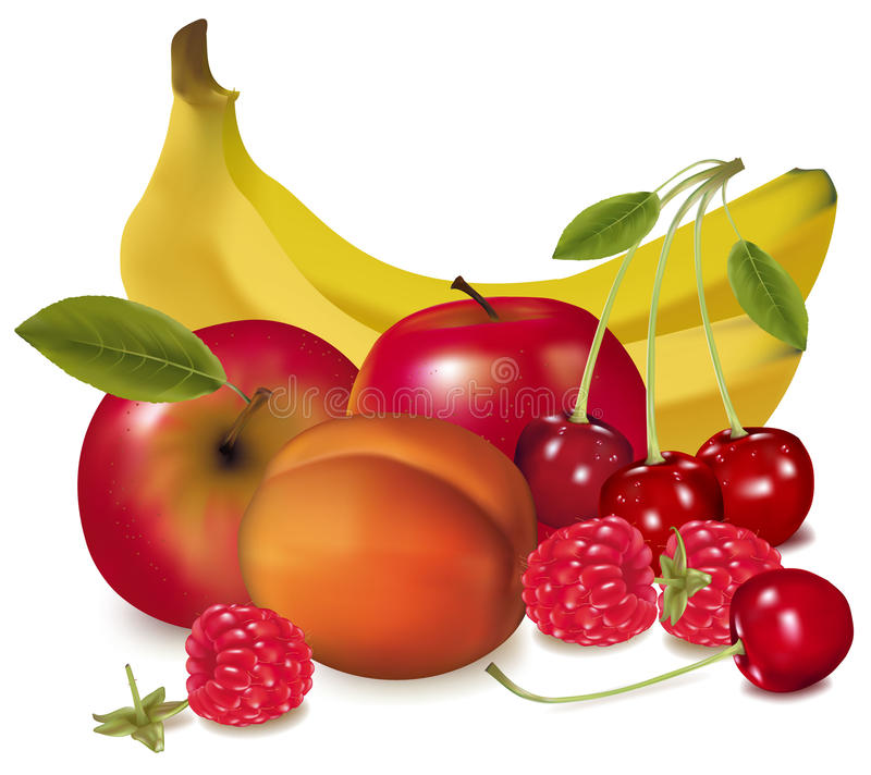 Un grupo de fruta. ilustración del vector