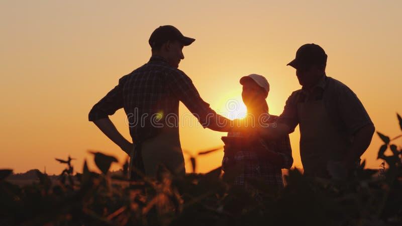Un grupo de granjeros en el campo, sacudiendo las manos Negocio agrícola de la familia imagen de archivo libre de regalías