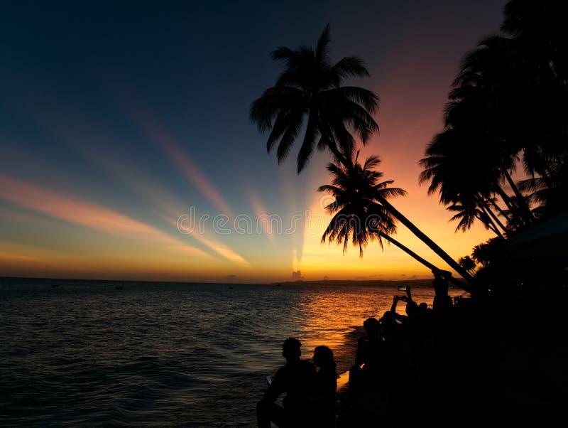 Un grupo de personas que mira la puesta del sol con las palmeras foto de archivo