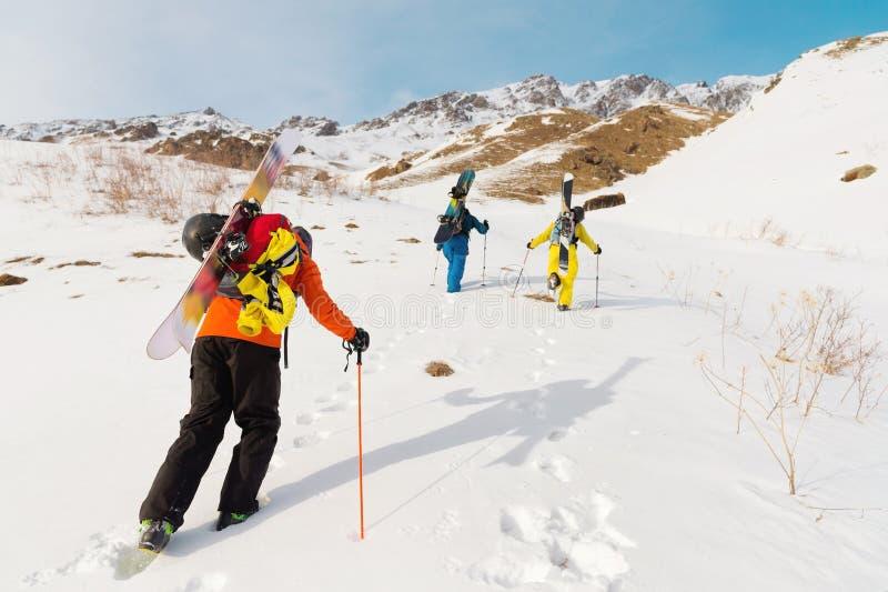 Un grupo de tres freeriders sube la montaña para el esquí backcountry a lo largo de las cuestas salvajes del fotografía de archivo libre de regalías