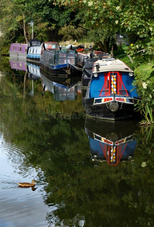 Un gruppo di barche strette attraccate sul fiume Stort fotografia stock libera da diritti