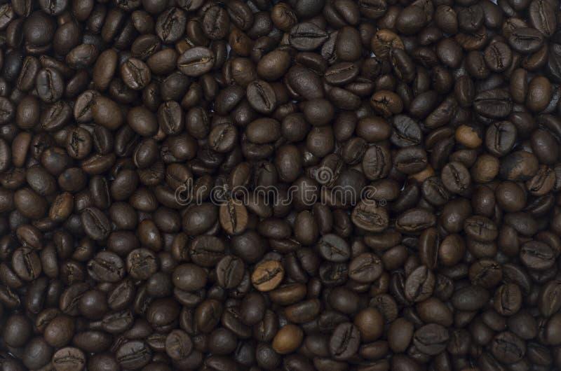Un gruppo di chicchi di caffè che riempiono l'immagine immagini stock