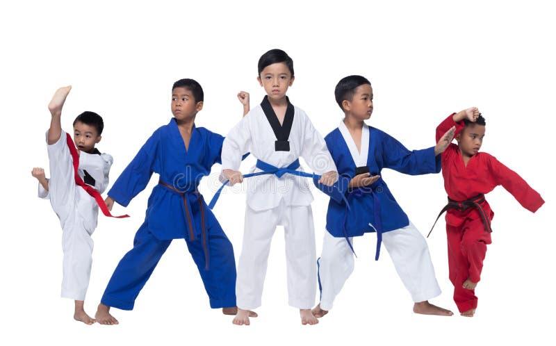 Un gruppo di cinque 5 bambini blu rossi il Taekwondo della cinghia II immagini stock libere da diritti