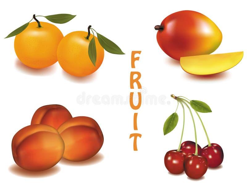 Un gruppo di frutta. illustrazione di stock