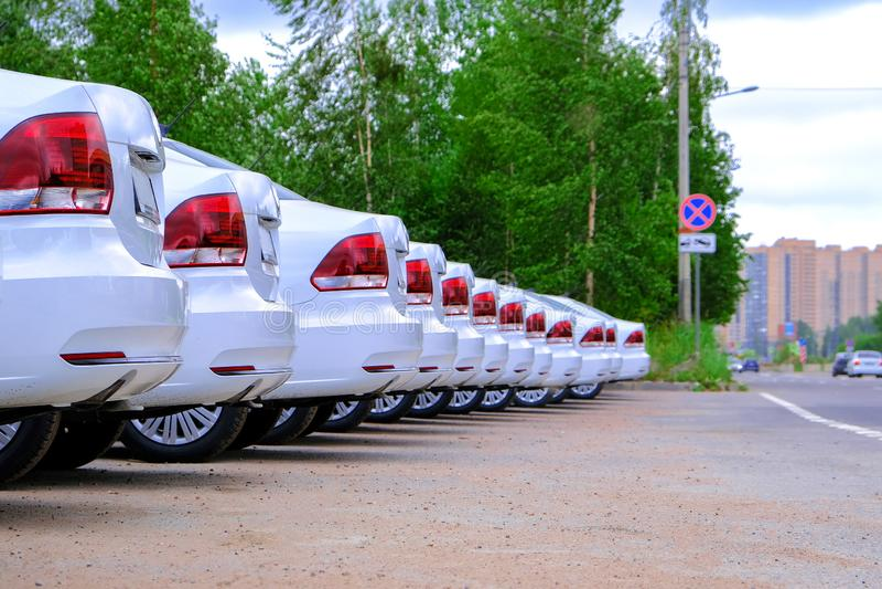 Un gruppo di macchine bianche nuove Parcheggio di fila Registrazione nella polizia stradale immagine stock libera da diritti