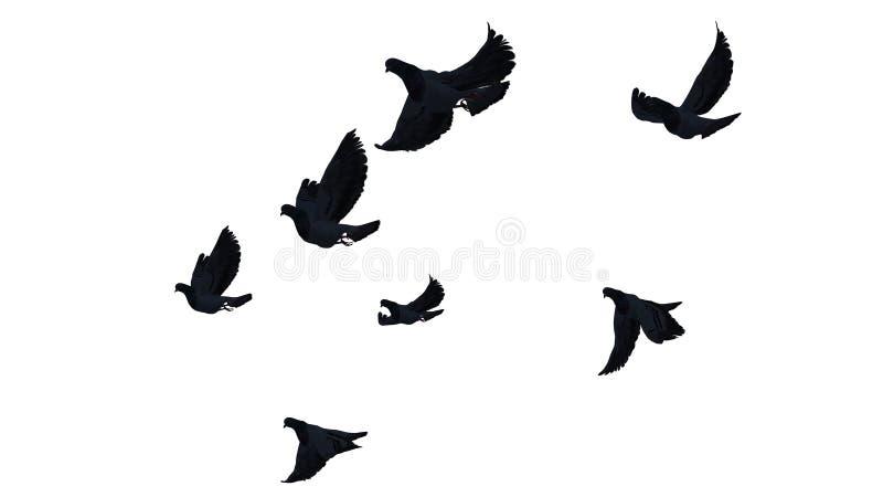 Un gruppo di piccioni di volo illustrazione vettoriale