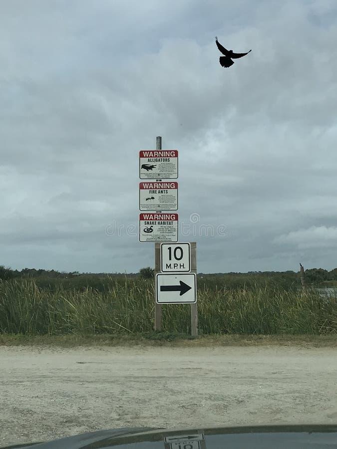 Un gruppo di segni avverte la gente dei pericoli delle zone umide di Florida fotografia stock