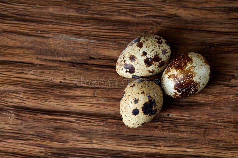 Un gruppo di tre uova di quaglia su un fondo di legno scuro, vista superiore, primo piano, fuoco selettivo, spazio della copia, l immagine stock
