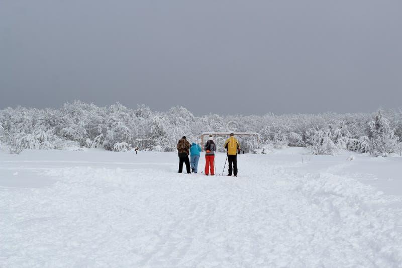 Un gruppo di turisti nei vestiti luminosi di sport sta sciando all'entrata alla foresta innevata immagini stock libere da diritti