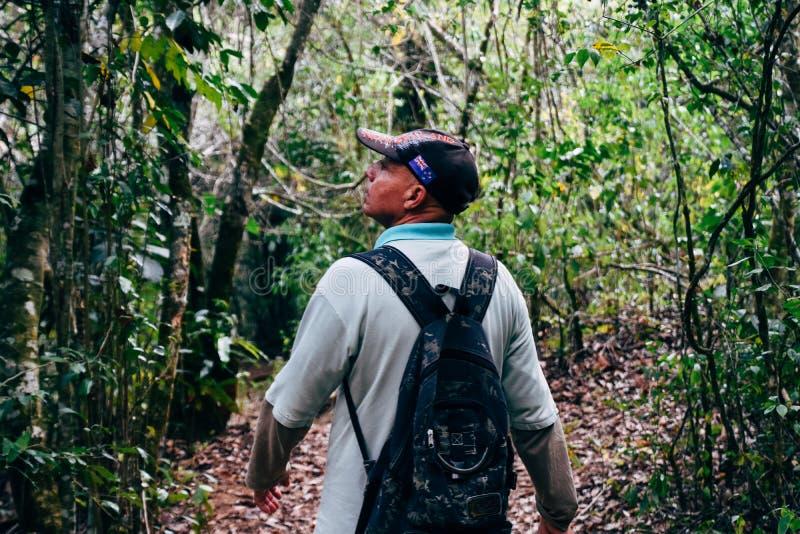 Un guía turístico local toma a los turistas para el bosque del paseo bajo la lluvia cerca de Trinidad, Cuba imagen de archivo libre de regalías