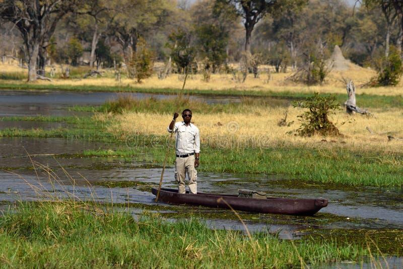 Un guide touristique sur un canoë de mokoro au Botswana photo stock