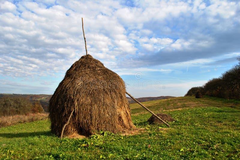 Un haystack fresco con el cielo azul adentro foto de archivo