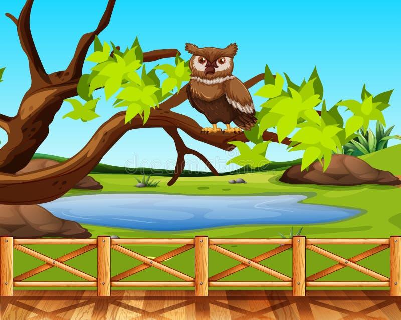 Un hibou se reposant dans une scène d'arbre illustration de vecteur