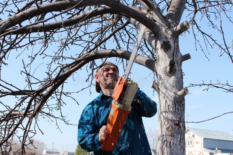 Un hombre asierra un árbol con una sierra eléctrica fotos de archivo