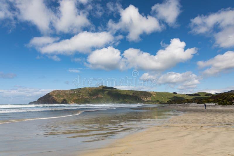 Un hombre camina solamente en la playa remota de Allans en península del ` s Otago de Nueva Zelanda fotos de archivo libres de regalías