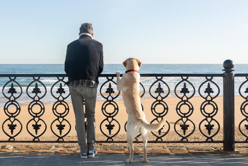 Un hombre con su perro que se inclina en una verja que mira el mar en el fondo imagenes de archivo