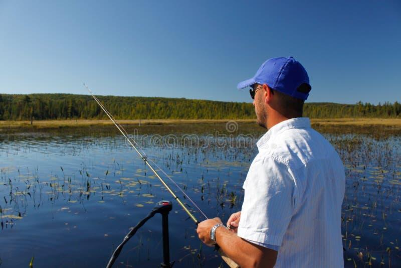 Pesca del hombre para la perca americana fotografía de archivo libre de regalías