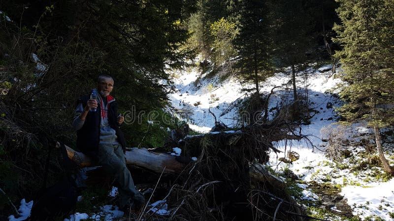 Un hombre en un bosque de la montaña fotografía de archivo libre de regalías