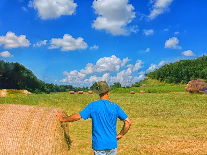 Un hombre en el ahat cubierto con la paja mira en el campo Trabajo agrícola Cosecha del trigo foto de archivo