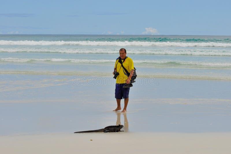 Un hombre en la playa con una iguana marina fotos de archivo libres de regalías