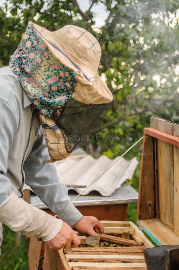 Un hombre escribe en una granja en una colmena de la abeja imagen de archivo