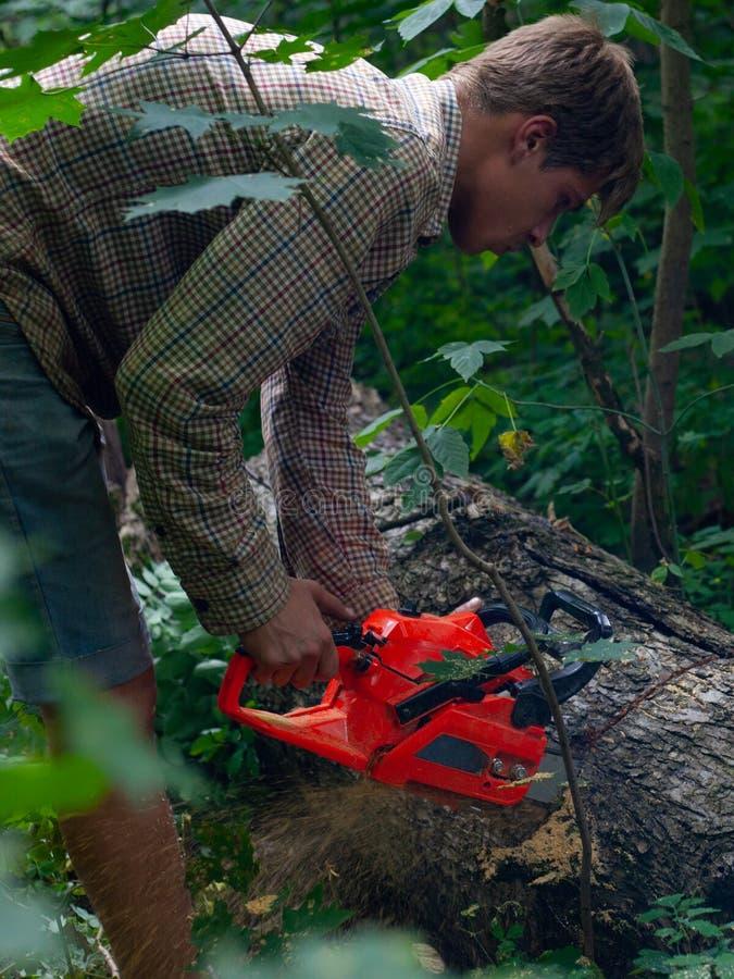 Un hombre joven asierra con una motosierra de los tocones de árbol, prepara la leña para el invierno, un individuo corta un poste fotos de archivo libres de regalías