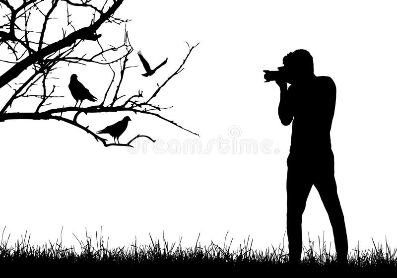Un hombre joven en naturaleza que fotografía los pájaros que se sientan en rama de árbol ilustración del vector