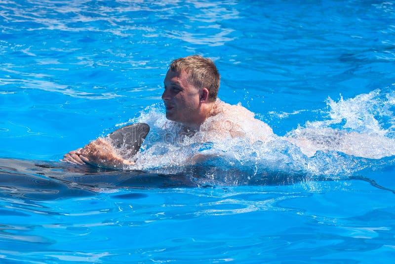 Un hombre joven está montando el delfín, natación del muchacho con el delfín en agua azul en la piscina de agua, mar, océano, del imagen de archivo