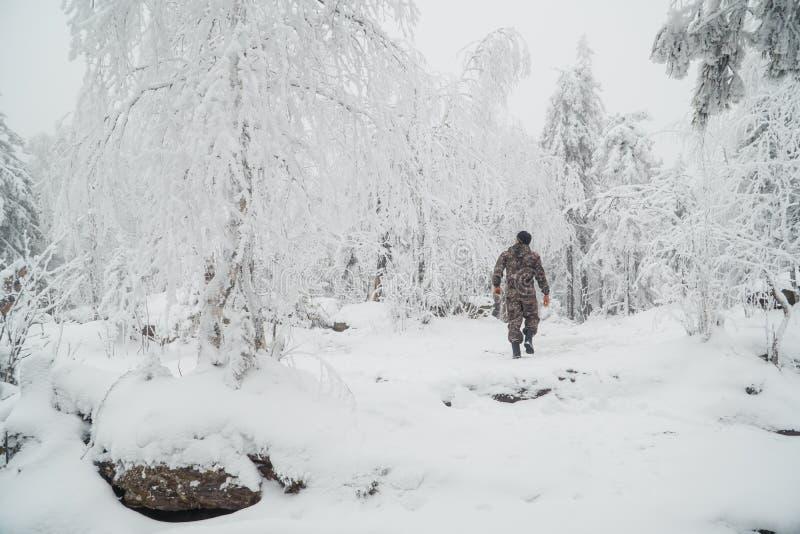 Un hombre joven que camina en un bosque del invierno en el día soleado hermoso, visión desde la parte posterior fotografía de archivo libre de regalías