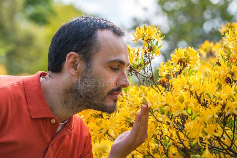 Un hombre joven que disfruta del aroma del flor de la primavera del yello brillante fotografía de archivo