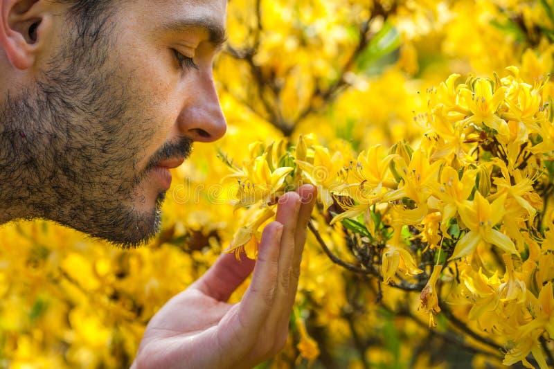 Un hombre joven que disfruta del aroma del flor de la primavera del yello brillante foto de archivo libre de regalías