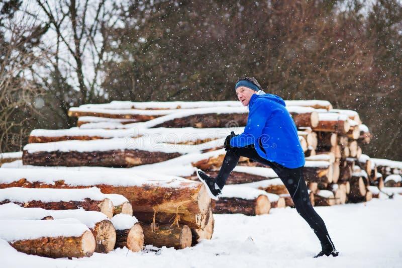 Un hombre mayor que estira por la pila de registros antes del funcionamiento en naturaleza del invierno foto de archivo libre de regalías