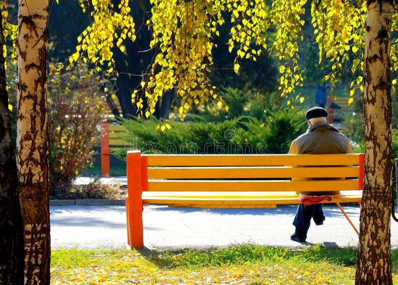 Un hombre mayor que se sienta en un banco en parque del otoño fotografía de archivo