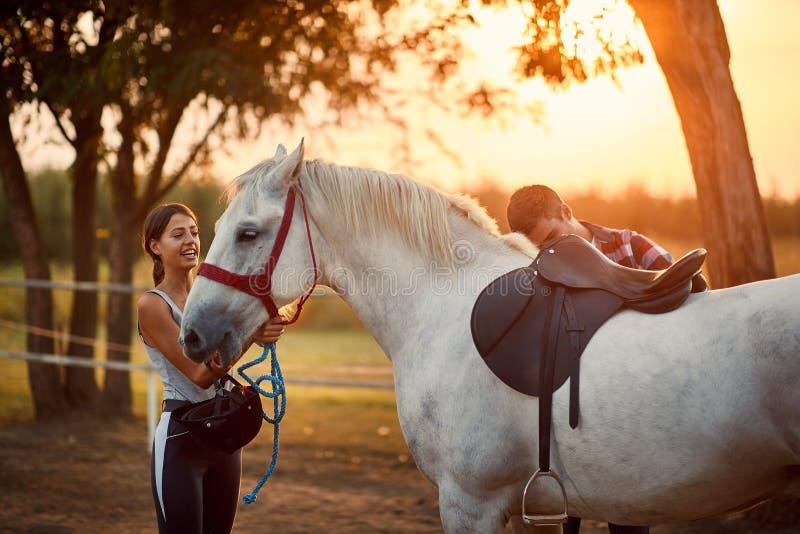 Un hombre montando una montura en el caballo imagen de archivo