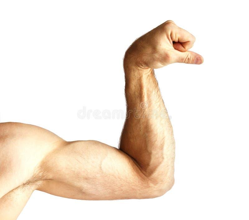 Un hombre muestra fuerza del brazo fotografía de archivo