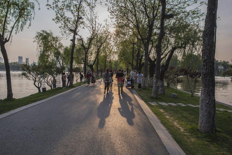 Un hombre que camina en el parque fotografía de archivo libre de regalías
