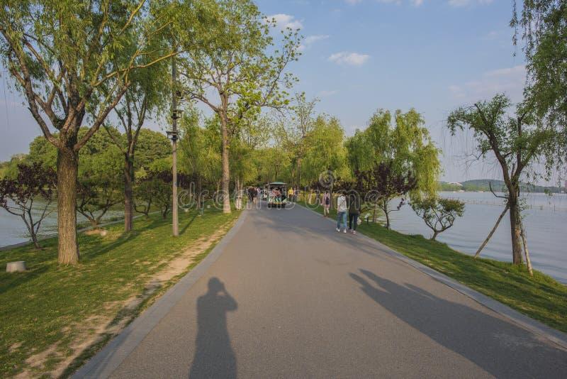Un hombre que camina en el parque fotos de archivo libres de regalías