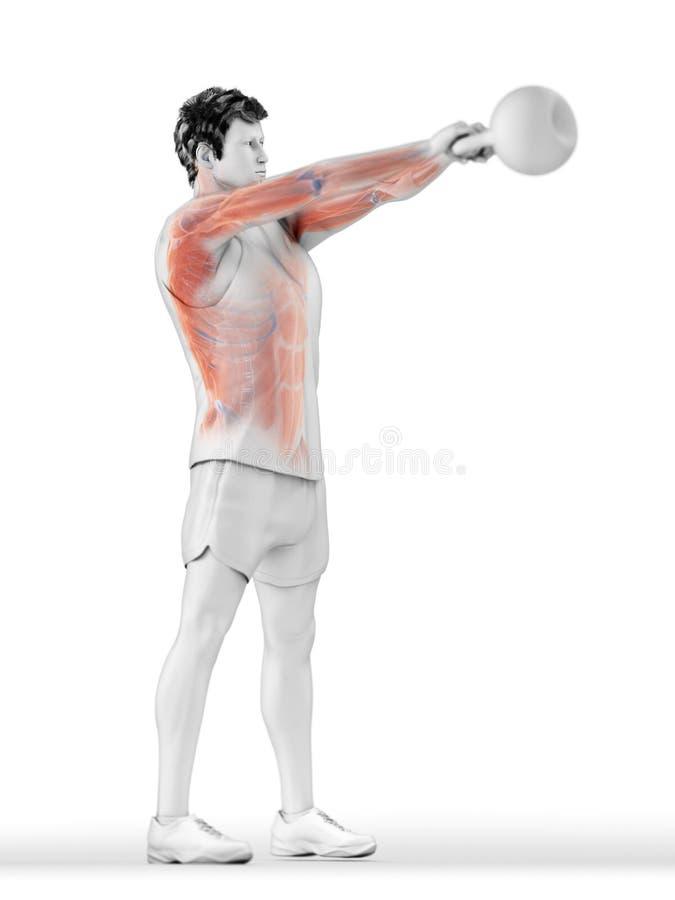 Un hombre que hace un entrenamiento del kettlebell libre illustration